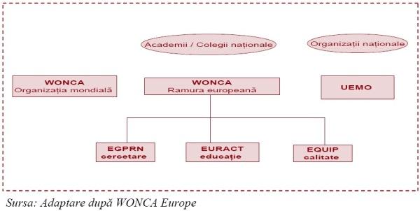 Organizaţii europene ale medicilor de familie